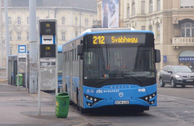 Tömegek a Normafán, új buszjáratot indít a BKK